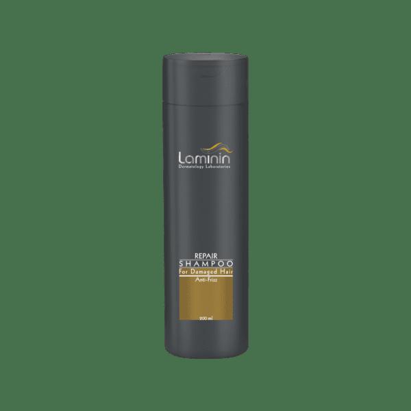 shampoo for damaged hair 1 600x600 - شامپو موهای آسیب دیده لامینین